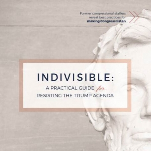 Indivisible Missing Members Poster Templates
